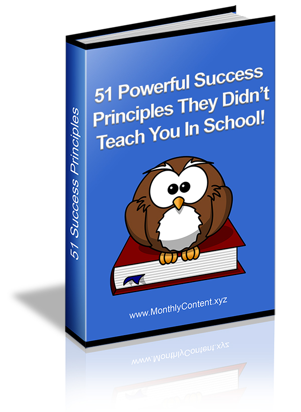 51 Powerful Success Principles E cover